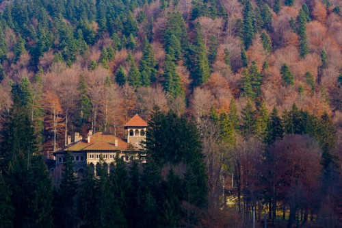 Royal Residence - Busteni