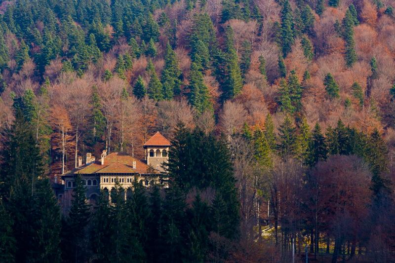 royal-residence-busteni.jpg